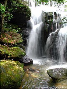 Rainbow Falls at Dismals Canyon near Phil Campbell in Franklin County, Alabama.