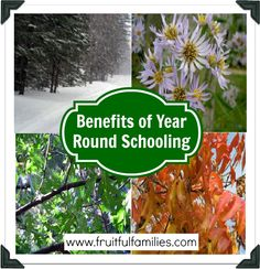Fruitful Families: The Benefits to Year-Round Homeschooling.