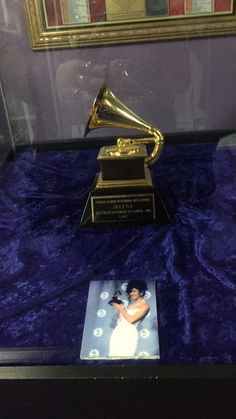 Grammy Selena Quintanilla queen Perez Q-productions museum Selena Quintanilla Perez, Selena Museum, Selena Costume, Selena And Chris Perez, Jackson, Objects, Bucket, Queen, Celebrities