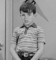 Jerry Mathers as Beaver
