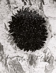 Anselm Kiefer    For Robert Fludd (Für Robert Fludd), 1995-96    Acrylic, emulsion, and sunflower seeds on woodcut mounted on photo-collage    103.5 x 81 x 10.6 cm. 16 spreads    Guggenheim Bilbao Museoa