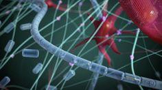 Joe Landolina: This gel can make you stop bleeding instantly | Talk Video | TED.com