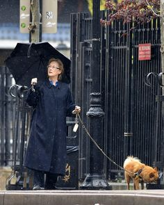 Meryl Streep walks with her dog in Tribeca in New York City