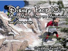 One Disney fact I didn't know