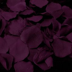 Eggplant or Plum Flower Girl Petals - Plum Wedding Accessories - Plum Wedding Collections