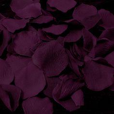 Eggplant or Plum Flower Girl Petals - Plum Wedding Accessories - Plum Wedding Collections