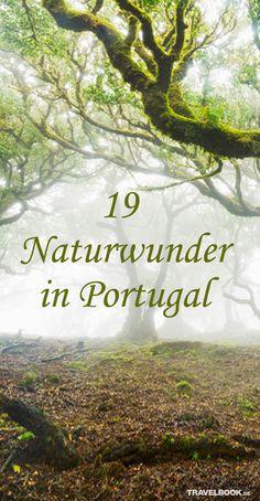 Portugal ist wahrlich kein großes Land: Mit rund 93.000 Quadratkilometer hat es nur ein Viertel der Fläche Deutschlands. Doch die Natur hat sich auf dem kleinen Raum einiges einfallen lassen. 19 Orte, die Portugiesen und Besuchern gleichermaßen den Atem rauben.