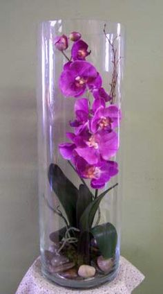 Orchid in tall glass vase. Potential table centerpieces