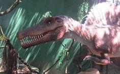 Guia Folha - Passeios - Dinossauros em tamanho real estão em exposição no zoológico de SP; veja fotos - 09/09/2014