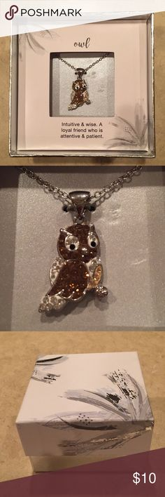 Sparkle Owl Necklace 🦉 This is a brand new necklace.  The sticker was removed as this was a gift, but I have never taken it out of the box.  It comes in a cute gift box.  All my products come from a smoke-free home and are packaged with care. Jewelry Necklaces
