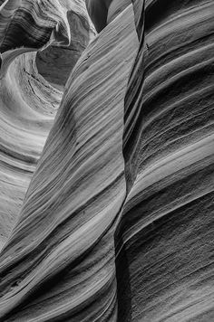 Fifty Shades of Gray Photograph - 25% of all photographer's proceeds will be donated to Prostate Cancer Research in honor of her father's memory.