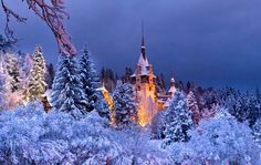 Peles Castle, Royal Estate of Sinaia. Photo by Nora De Angelli — National Geographic Your Shot