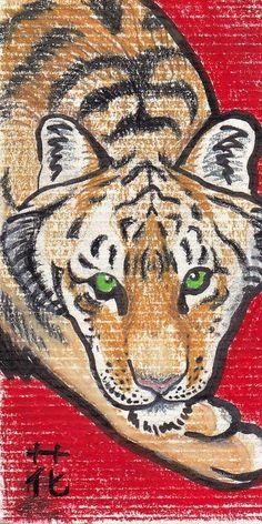 Tiger Media BOB D.Baum.8 TIGERCARD