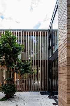 Warren Cottage Extension and Renovation by McGarry-Moon Architects Kingston upon Thames Adam Currie - Architecture and Home Decor - Bedroom - Bathroom - Kitchen And Living Room Interior Design Decorating Ideas - Modern Architecture House, Facade Architecture, Modern House Design, Architecture Portfolio, Architecture Colleges, Architecture Sketchbook, Architecture Awards, Victorian Architecture, Sustainable Architecture