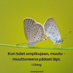Kun tulet umpikujaan, muutu - muutuneena pääset läpi. I Ching #aforismi #elämä #onnenportti #muuttuminen