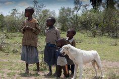 Kids and a dog along the road in Masai Mara, Kenya.