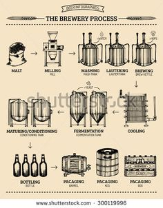 Similar Images, Stock Photos & Vectors of The set of beer info graphics for your design. Home brewing, crafted beer. Elements of brewing process. Home made alcohol drinks. Beer Brewing, Home Brewing, Beer Infographic, Infographics, Beer Factory, Brewery Design, Fitness Gifts, Scotch Whisky, Craft Beer
