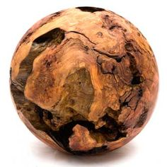 Redwood Root Ball by Keith Holamon holamonstudio.com