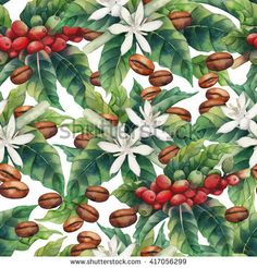 Watercolor coffee seamless pattern isolated on white background. Hand painted leaves, flowers and beans. Watercolor Plants, Watercolor Logo, Coffee Flower, Coffee Label, Painted Leaves, Hand Painted, Plant Background, Plant Painting, Coffee Plant