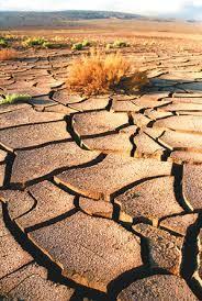 Erosión de los suelos.