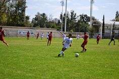 Listos los semifinalistas de la Copa Telmex de futbol en Aguascalientes ~ Ags Sports