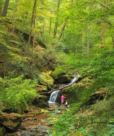 Philadelphia: Wissahickon Creek