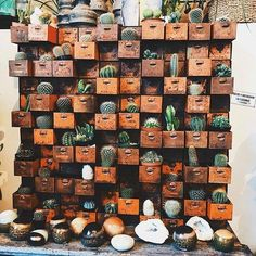 House Ornament; Potted Vegetation; Cactus;Plant Ornament; Dwelling Room; Learn about; Shelf;Courtyard Ornament; Cactus Indoor; Lawn Ornament;DIY ;Cactus Aesthetic