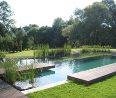 Freeform Planted Pool