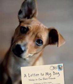 A Letter To My Dog: Notes To Our Best Friends PDF