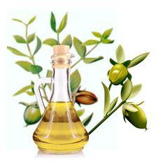 Los beneficios del aceite de jojoba para tu belleza: oro líquido para tu piel y tu cabello.