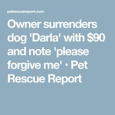 Owner surrenders dog 'Darla' with $90 and note 'please forgive me' • Pet Rescue Report