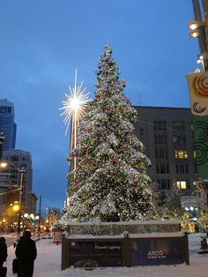 The gorgeous Westlake Christmas tree in Seattle! 'Tis the Season for lights and magic! Very Merry Christmas, Christmas Lights, Christmas Decorations, Holiday Time, Christmas Holidays, Sleepless In Seattle, Christmas Wonderland, Christmas Scenes, West Lake
