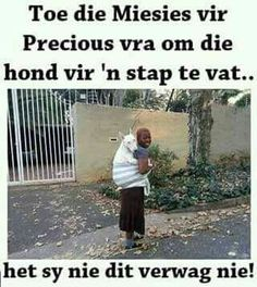 Taking dog for a walk. Jokes Pics, Funny Jokes, Taking Dog, Afrikaanse Quotes, Out Of Africa, Fb Covers, Have A Laugh, Twisted Humor, True Quotes