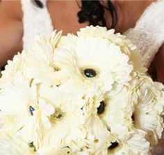 #gerbera daisy wedding All white gerbera bouquet