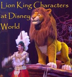 For a list of places to find Lion King characters at Disney World, see http://www.buildabettermousetrip.com/lion-king-disney-world