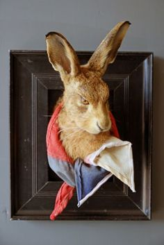 Henry The Taxidermy Framed Hare Designed By Rory Dobner I AM NOT SURE WHY I LOVE THIS SO MUCH!!