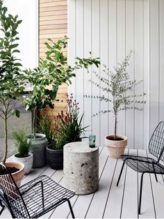 If you were looking for (apartment gardening), take a look below Balcony Plants, Balcony Garden, Outdoor Plants, Outdoor Gardens, Outdoor Decor, Outdoor Living, Zen Gardens, Small Front Porches, Cozy Patio