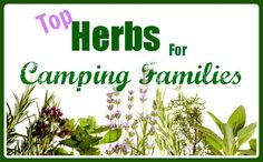 Some great information on herbal uses during camping.  Could make sachets ahead of time to hang in front of tents, etc.  It's also great information for the girls to have for future home use and would make for a great class during a camping trip!