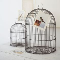 Two Bird Cages - NEW  These stunning soft matte metal birdcages look amazing hanging or placed anywhere around the home. Why not add our Vintage Birds to the outside. Set of 2. Large H 42 x Dia 31 cm, Small H 25 cm x Dia 20 cm.