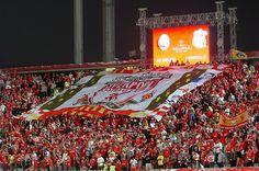 European Football - UEFA Champions League Final - Liverpool v AC Milan Liverpool Football Club, Liverpool Fc, European Cup, Soccer Fans, European Football, Ac Milan, Uefa Champions League, One Team, College Football