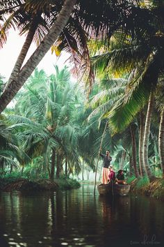 I Photographed The Life In Munroe Island