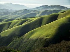 This staggeringly beautiful California Ranch has the most amazing view of rolling green hills.