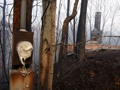 Chimneys and melted electrical boxes were left as an