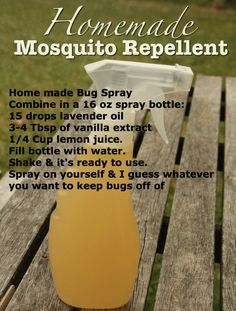 Home made Bug Spray:   Combine in a 16 oz spray bottle: 15 drops lavender oil 3-4 Tbsp of vanilla extract 1/4 Cup lemon juice.  Fill bottle with water.  Shake & it's ready to use. Spray on yourself & I guess whatever you want to keep bugs off of