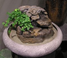Item Number: RTG 47 Bowl Style:Large Lotus Bowl Color: Textured Grey Stone  Bowl Size: 18in. Diameter Approx. Height: 13″ (from bottom of bowl to top of plant) Lush creeping curly fig trails from the top of thislarge lotus fishfountain. The multi layering of the rock gives an unusual light and flickering flowing effect of
