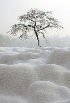 El calor de tu cuerpo calienta hasta el invierno más crudo