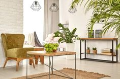 Learn how to deck out your apartment with earth tones with these tips from Apartment Guide. Wood Interior Design, Indoor Plant Pots, Scatter Cushions, Beautiful Interiors, Table Linens, Dining Bench, Home Goods, Home Appliances, Furniture