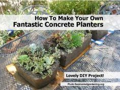 Hypertufa planters you can make yourself. Fall is a great time to make these and get them ready for spring planting or to give as gifts.
