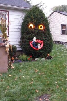 Bush monster!! It's real!!