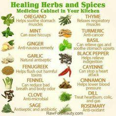 10 Best Healing Herbs